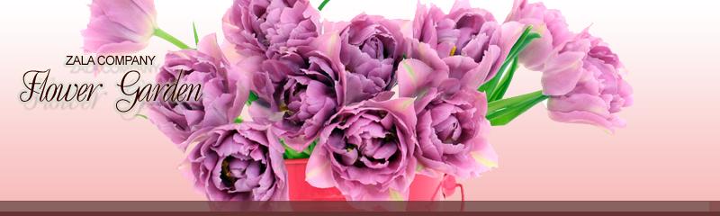 プリザーブドフラワー&花束ならザーラフラワーガーデン